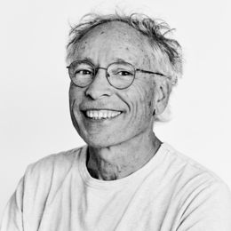 Jacques Goldstyn - La courte échelle